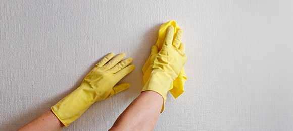 Pintor / Como limpar o papel de parede da forma certa