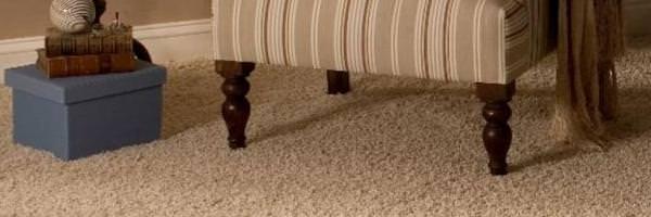 Reformas e Reparos / Prós e contras do carpete