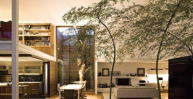 árvore casa 2