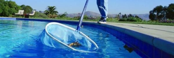 limpar piscina