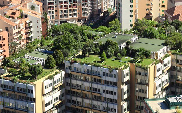 tendências de jardinagem